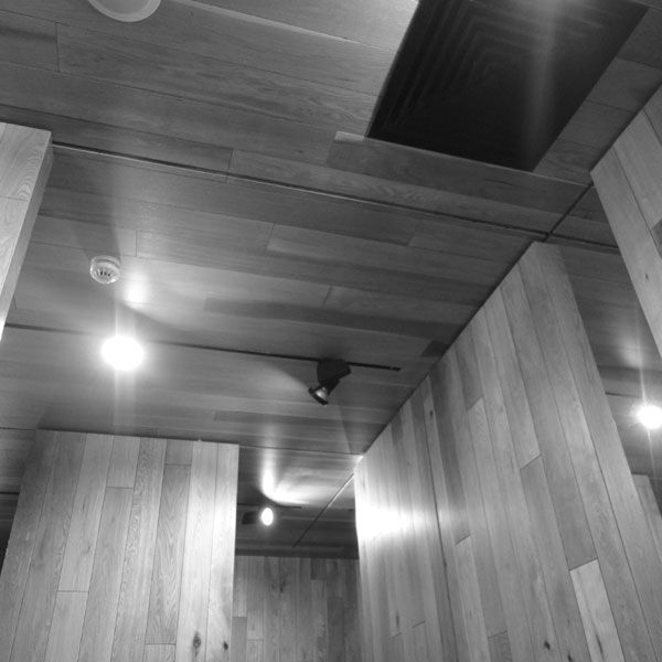 The timber element folds to become a ceiling and walls creating a gallery exhibition space on the southern end.