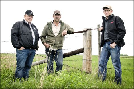 Colin, Dan and Ron are second- and third-generation farmers who produce Three Farmers Camelina Oil.