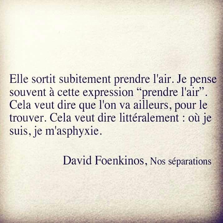 "David Foenkinos ""Nos séparations"""