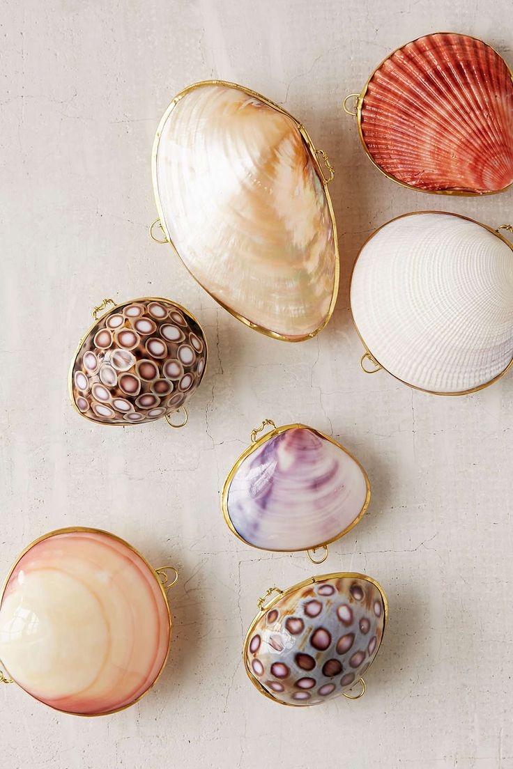 You can almost hear the waves and smell the sea thanks to these sea shell trinket boxes.