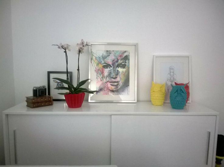 owls @ living room, paintings and my kodak machine
