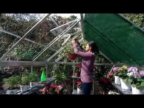 Small Greenhouse Kit - Polycarbonate with Galvanized Steel Base