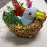 third grade nests