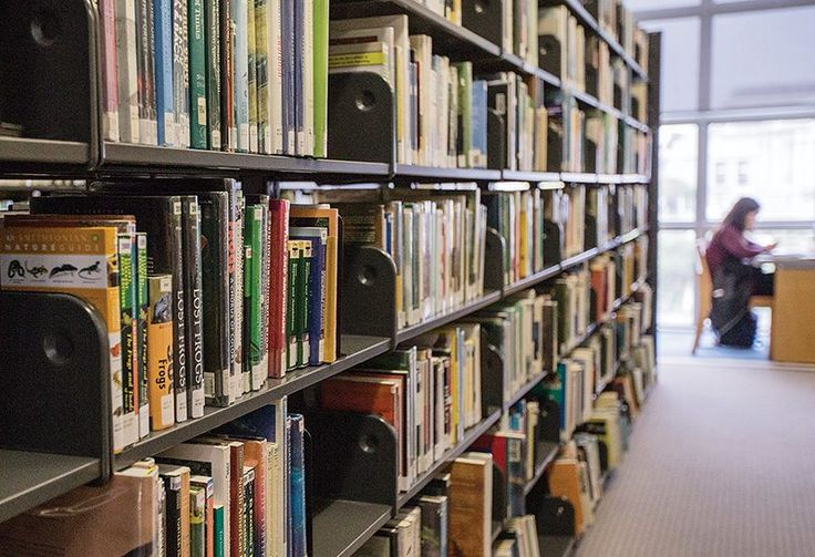 Some library officials say San Francisco could improve check-out times and inventory maintenance by installing radio frequency identification tags into its collection of books. (Jessica Christian/S.F. Examiner)