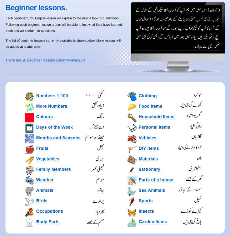 Warriors Meaning Into Urdu: Over 25 Free Urdu English Beginner Lessons Available
