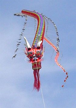 A fine example of a traditional Chinese Dragon kite. The most well-known of the centipede style kites from that country. Note the large number of segments in the tail that can't even be counted in this photo! Stretching away into the distance. T.P. (my-best-kite.com)