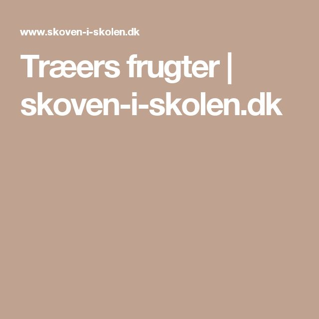 Træers frugter | skoven-i-skolen.dk