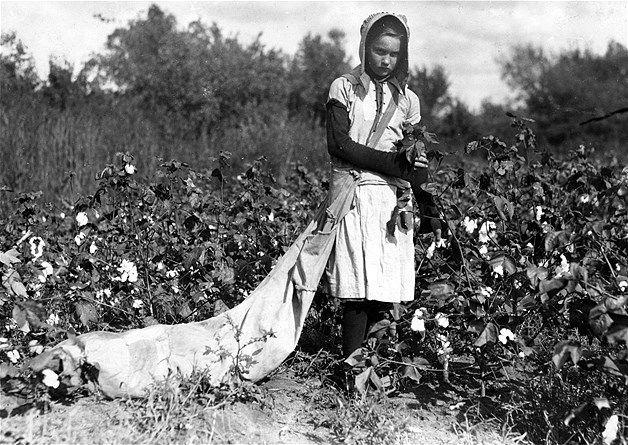 50 - PASADO 30 - Retrato de Callie Campbell, de 11 años, que recogía entre 75 y 125 libras de algodón al día en Potawatomie, Oklahoma, en 1916.
