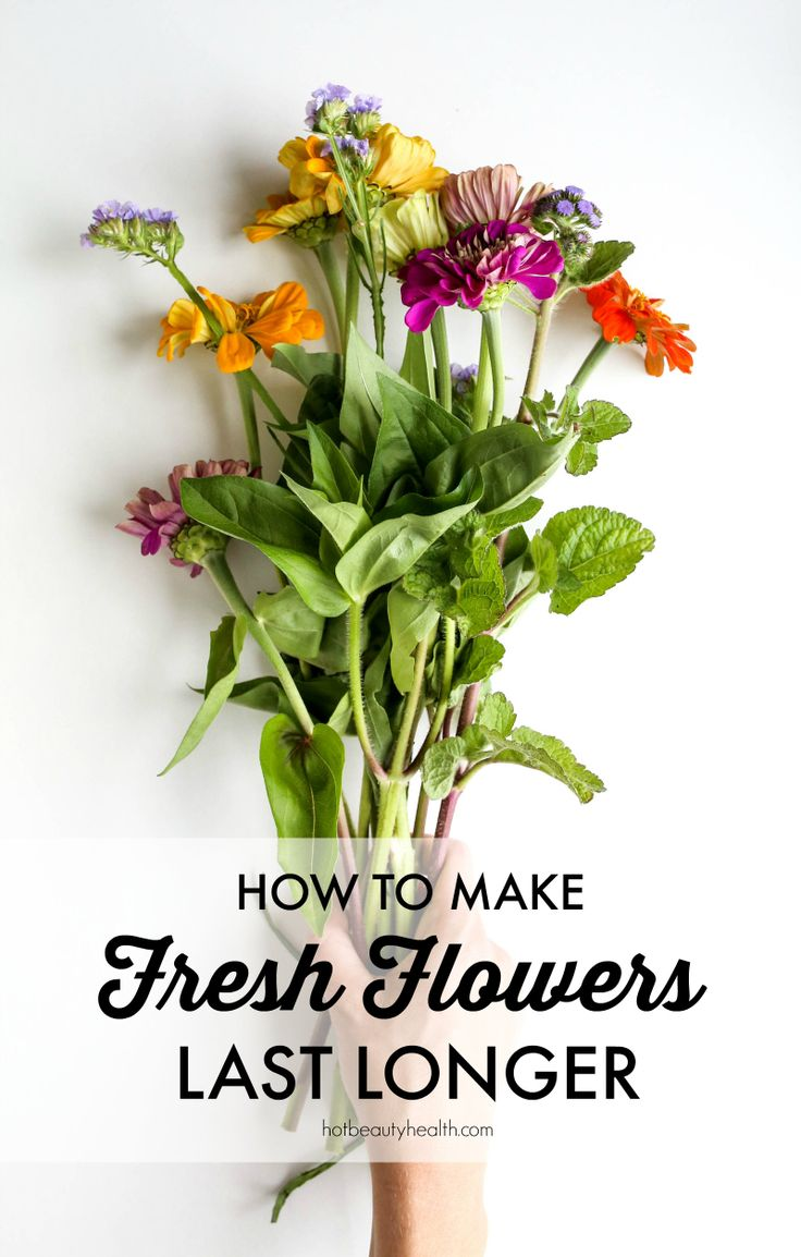 Doing a bit of gardening like planting your favorite flowers this summer? Learn a cool hack on how to make fresh flowers last longer.