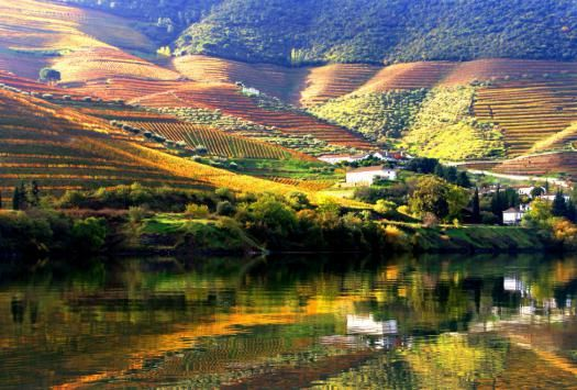 975x660_douro_valley_45_140x87.jpg (525×355)