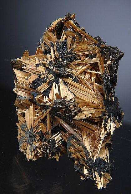 Fine example of golden Rutile sprays on Hematite