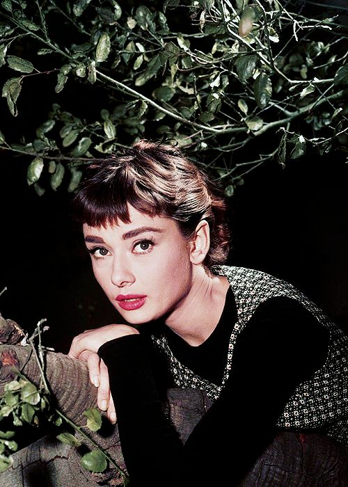 "beauvelvet: "" ""Audrey Hepburn photograhed on the set of Sabrina, 1954. "" I hate girls that giggle all the time. """
