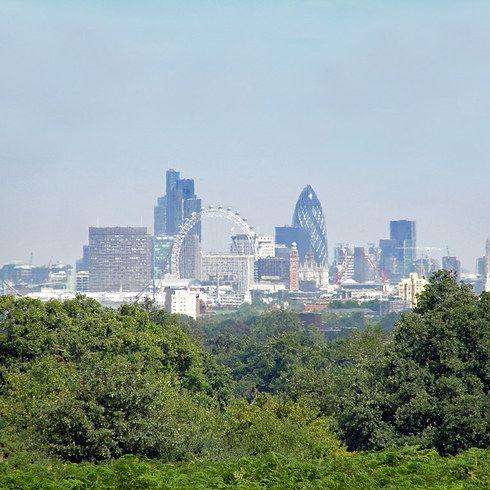 Richmond Park View Walk | 17 Lovely Walks To Take In London