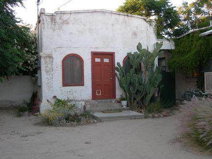 Red Door, Cat Door, Cactus