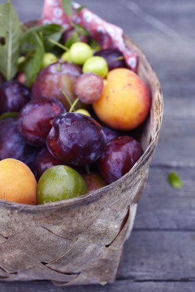 Pruimen / plums