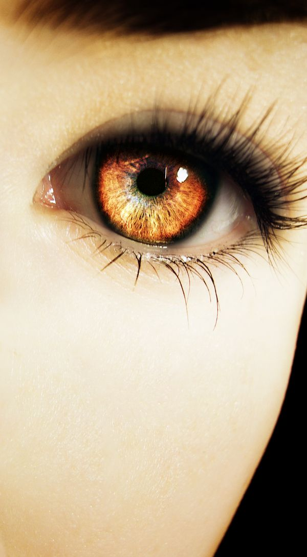 lupa's eyes are one of her most defining features with their light amber coloring and piercing stare.