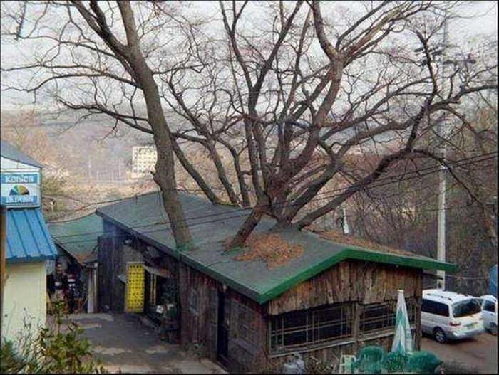 vivek jain baghpat co. sugar mill baghpat city mail- vivekbagpat@yahoo.co.in mob. 9410604633 -