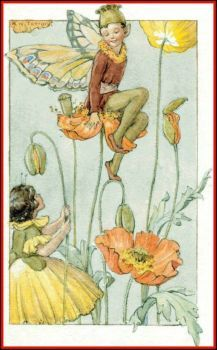Margaret Tarrant The Poppy Elves 40 Pieces Mini Jigidi Jigsaw Puzzle With Excerpt From Poem Pretending By Marion St John Webb Flower Fairies