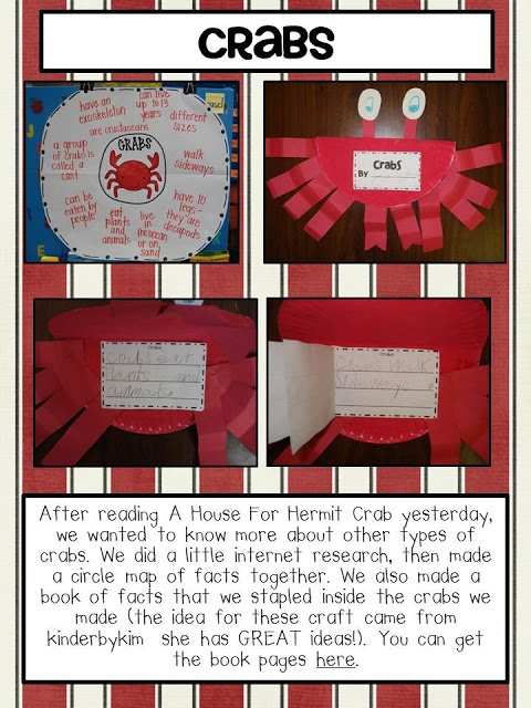 Sequencing Activities Based on a House for a Hermit Crab