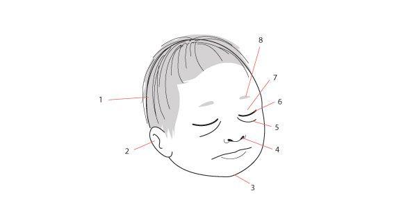 Newborn face