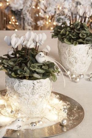 Witte kersttrend 'Missis Decadence'. Bij de trend 'Missis Decadence' speelt de kleur wit een centrale rol. Door gebruik te maken van klassieke en zilverkleurige accessoires, krijgt het interieur een zoete en sprookjesachtige uitstraling waardoor je je een beetje in winterwonderland waant. De witte varianten van planten als orchideeën, kerststerren en cyclamen lenen zich bij uitstek om een witte kerst te 'garanderen'. by gertrude