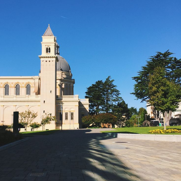 best university of san francisco ideas  university of san francisco ✨ photo by j kleinnn