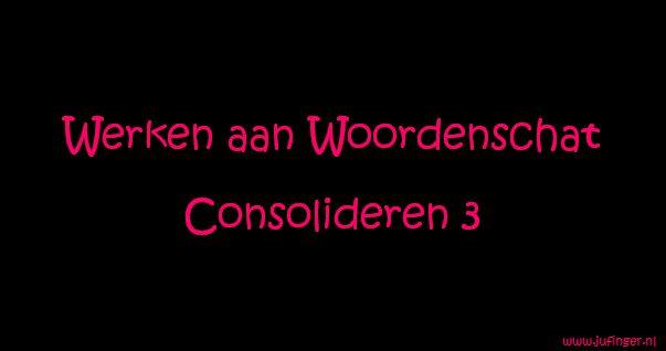 Werken aan Woordenschat - Consolideren 3 - Juf Inger