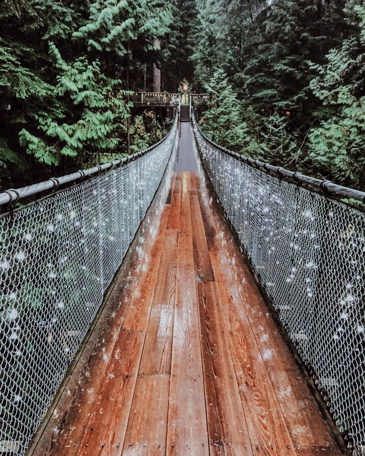 Capilano Suspension Bridge Park, Vancouver, CA.
