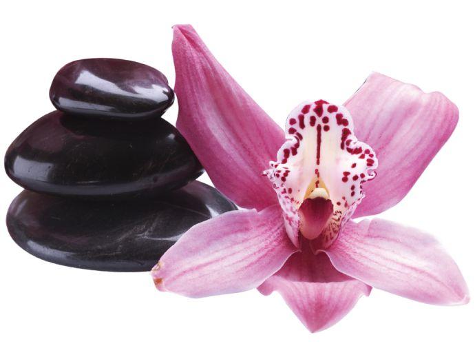 Vinilo decorativo Orchid and Stones ❤¿te gusta tener las paredes bien a la moda!?¡Apuesta por patrones orientales! Decoración perfecta también para los salones de belleza y centros SPA