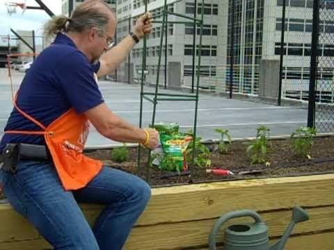 Best Yard Garden Videos Images On Pinterest Garden Ideas