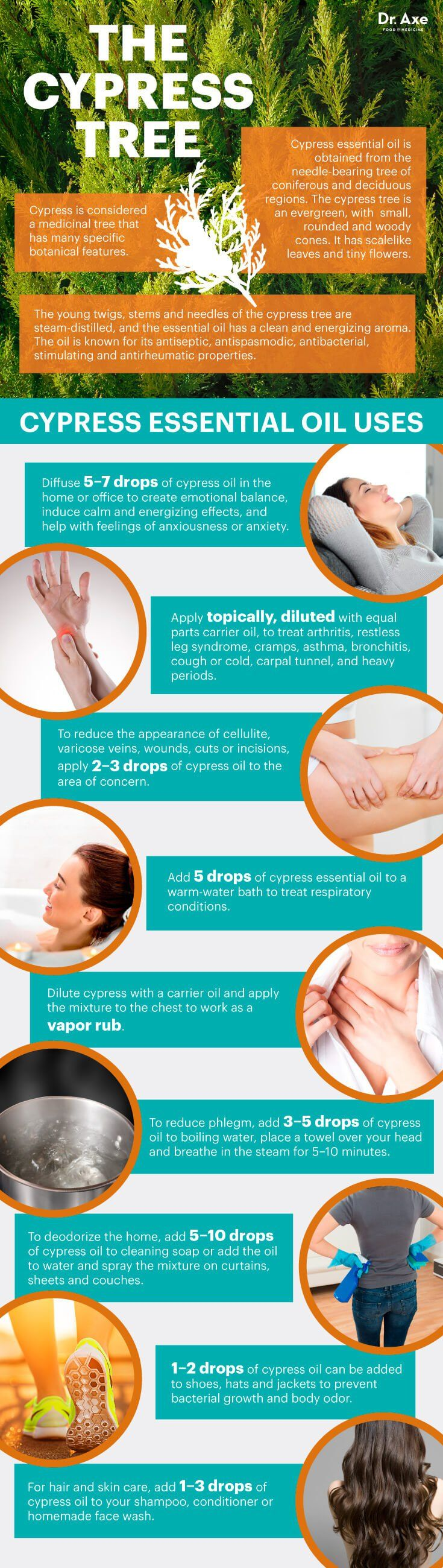 8 Surprising Benefits of Cypress Essential Oil - Dr. Axe