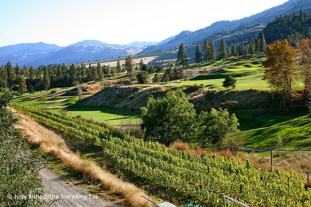 Overlooking vineyards and Fairview Mountain Golf Course, Oliver, BC: Wine Capital of Canada
