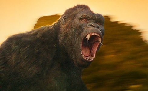 Check out the new King Kong from Kong: Skull Island. Pic & details here