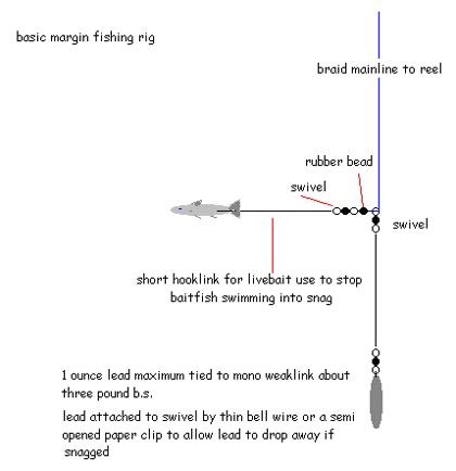 Awe Inspiring Fishing Rig Diagrams Fishing Rigs Diagrams Car Diagrams Carp Rig Wiring 101 Hemtstreekradiomeanderfmnl