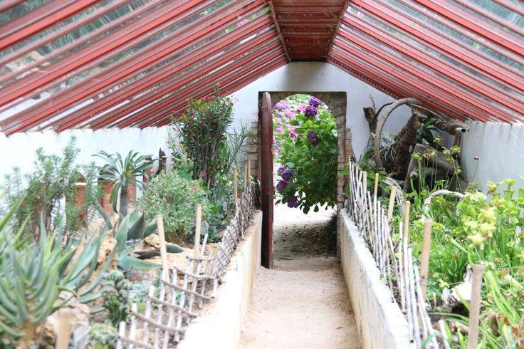Bezoek La Bambouseraie, botanische tuin bij Anduze - Tips voor je vakantie in Frankrijk