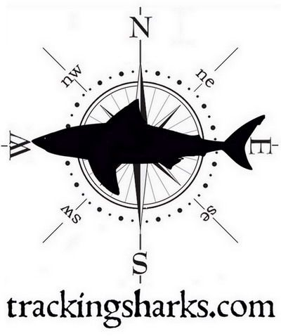 Tracking Sharks is home to the world famous Shark Attack Bites Tracking Map. You also can find news about recent shark attacks and bites, victims and locations, live track sharks and find general news about sharks. Check our archive of shark bite stories and features.