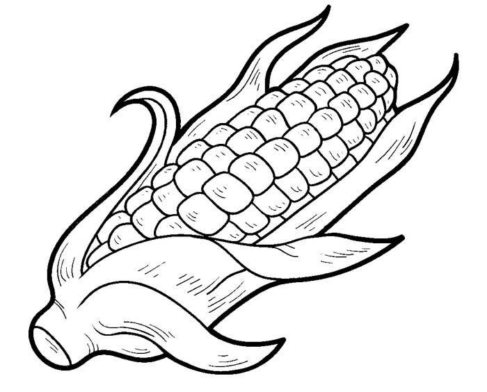 Dibujo De Mazorca De Maiz Para Colorear Dibujos De Frutas Mazorcas De Maiz Mazorcas