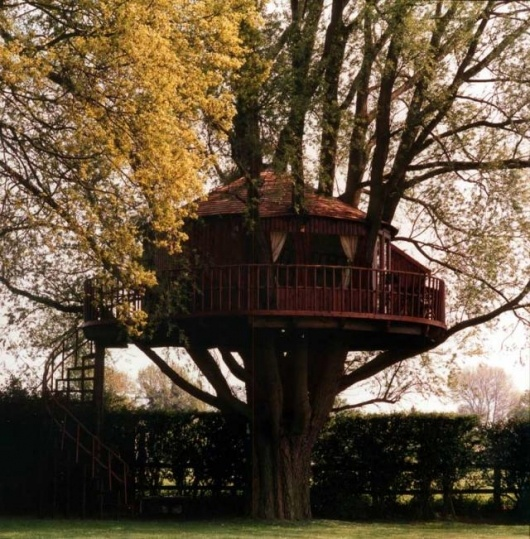 Future Tree Houses 171 best treehouses images on pinterest | treehouses, architecture