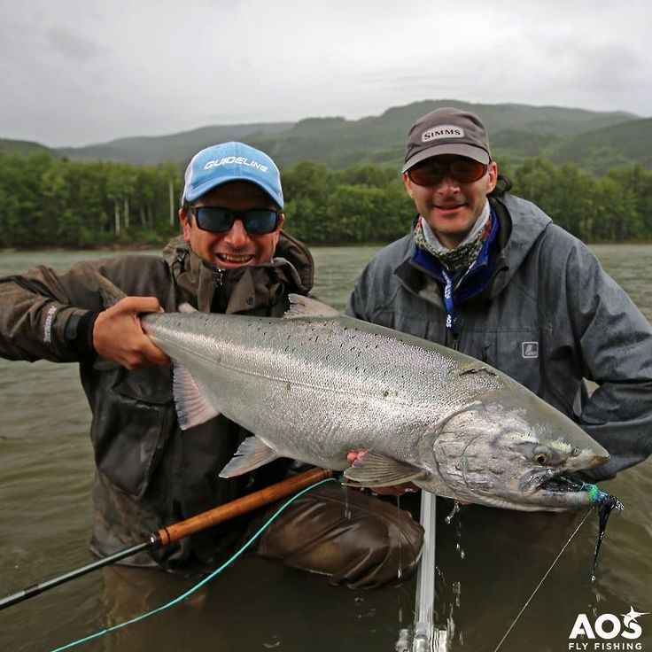 Fresh Chinook - pure skeena chrome @skeenaspeyfishing! Find more details about this amazing fly fishing trip on our travel page! #aosfishing #flyfishingmakesyouhappy #flyfishing #fliegenfischen #pescamosca #fluefiske #graz #styria #steiermark #austria #onlineshop #picoftheday #photooftheday #lovefishing #catchoftheday #catchandrelease #onthefly #guidelineflyfish #speycasting #skeenariver #skeena #canada #kanada #feelthepull #chinook #chinooksalmon @aosfishing @skeenaspeyfishing