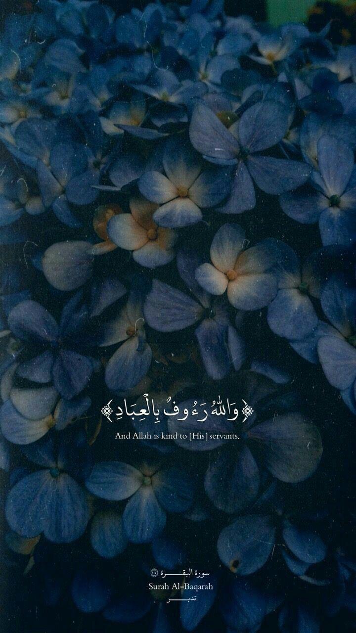 Pin Oleh Ahmed Adham Di Holy Quran Islamic Quotes Motivasi