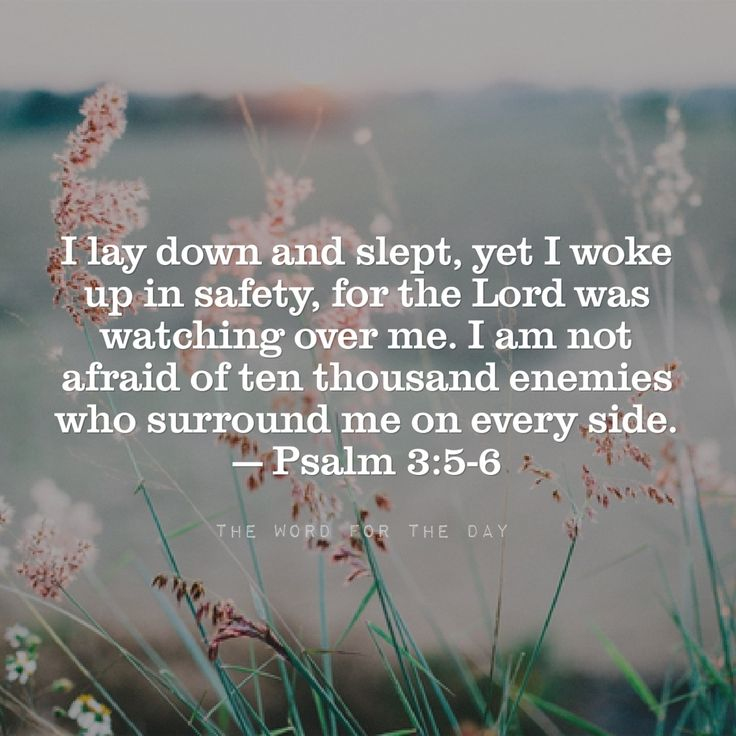 In peace I will lie down and sleep, for you alone, Lord, make me dwell in safety. Psalm 4:8 How dependent we are upon God for our safety! . Our arch enemy, satan, goes about like a roaring lion seeking whom he may devour. Under such conditions, how...