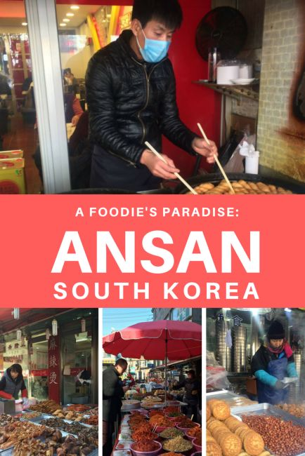 Ansan Multicultural Street is a hidden South Korean foodie gem and offers cheap, authentic delicacies from around the World.