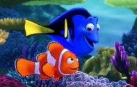 The Blackfish Effect Hits 'Finding Dory' | Ecorazzi