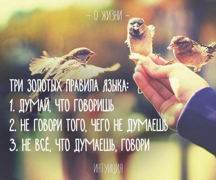 - ИНТУИЦИЯ -