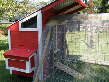 hoop house chicken run with pallet made hen house