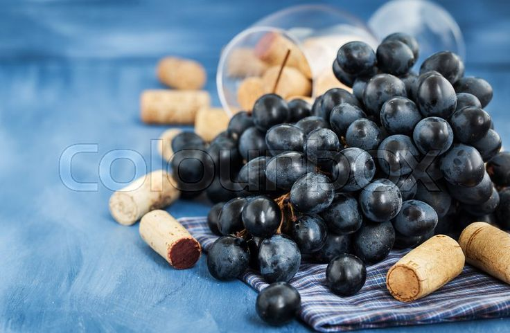 Fruits photography. Branch of purple grape and wine corks on the table. Photo by Ekaterina Smirnova, follow her on https://www.colourbox.com/supplier/ekaterina-smirnova-80703 #food #stockimage #colourbox
