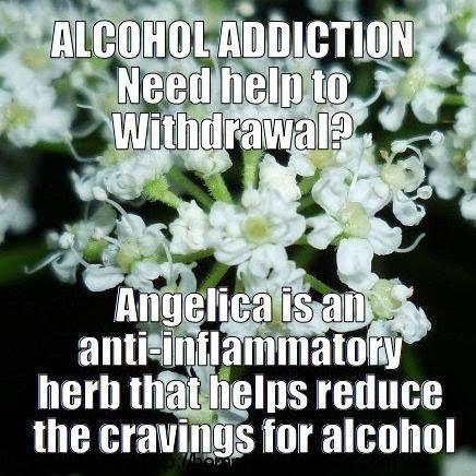Angelica & Alcohol Addiction~   www.homemademedicine.com/home-remedies-alcohol-detox.html