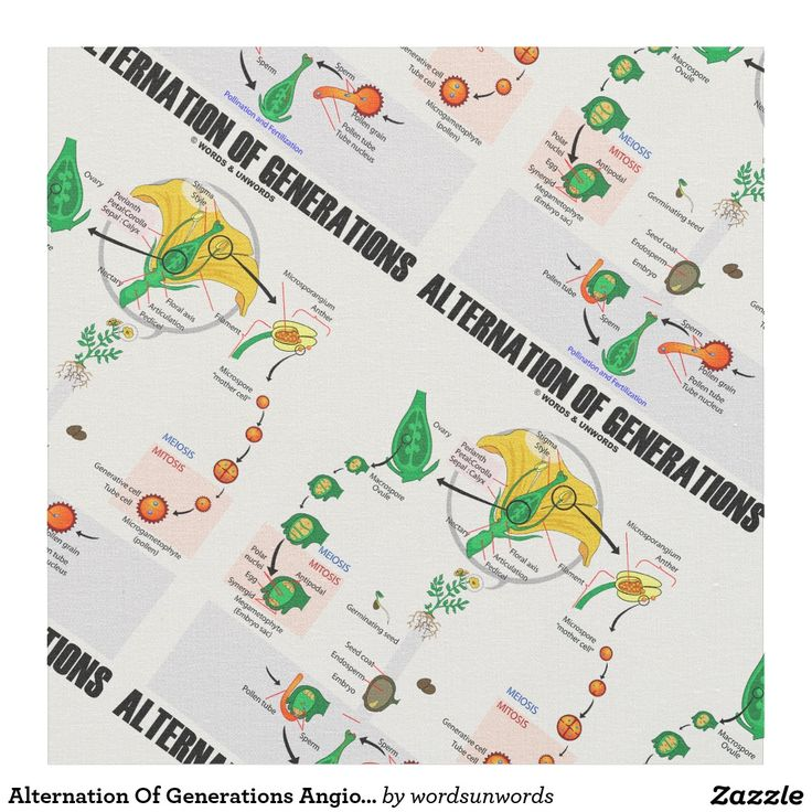 """Alternation Of Generations Angiosperm Biology Fabric #biology #alternationofgenerations #angiosperm #lifecycleofaflower #flower #geek #biologist #botany #botanist #wordsandunwords Design and create unique scientific attitude things with this fabric featuring a life cycle of an angiosperm (flower) along with the caption """"Alternation Of Generations""""."""