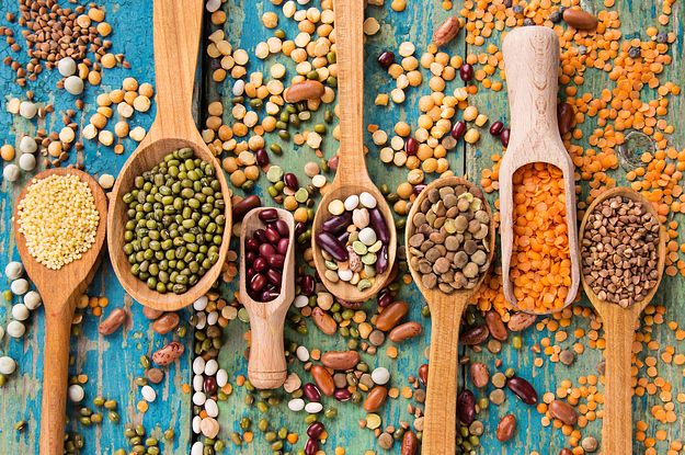 May use of living with vegetarian suite mate next year. 28 Surprising Sources Of Protein That Will Keep You Feeling Full And Satisfied