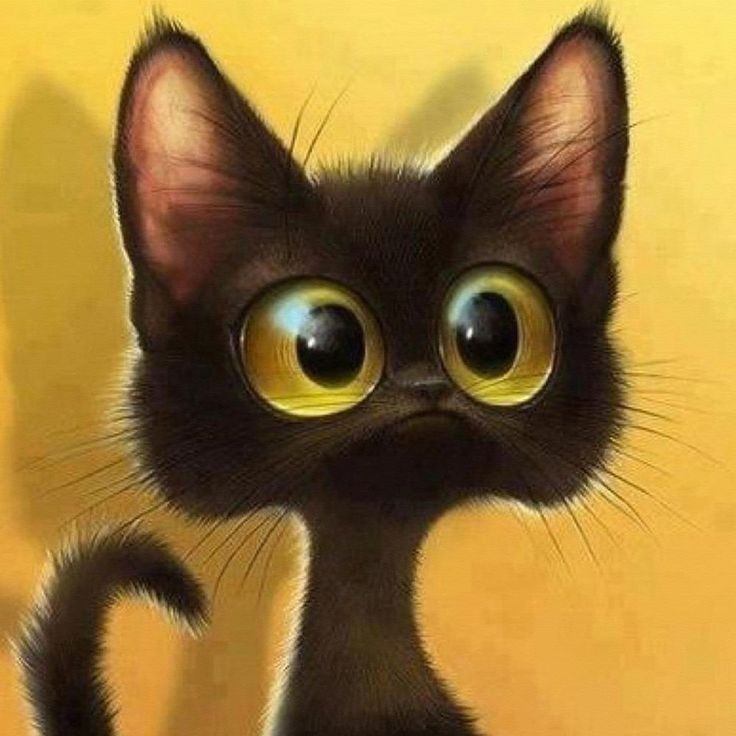 Картинка котенок выпучил глаза